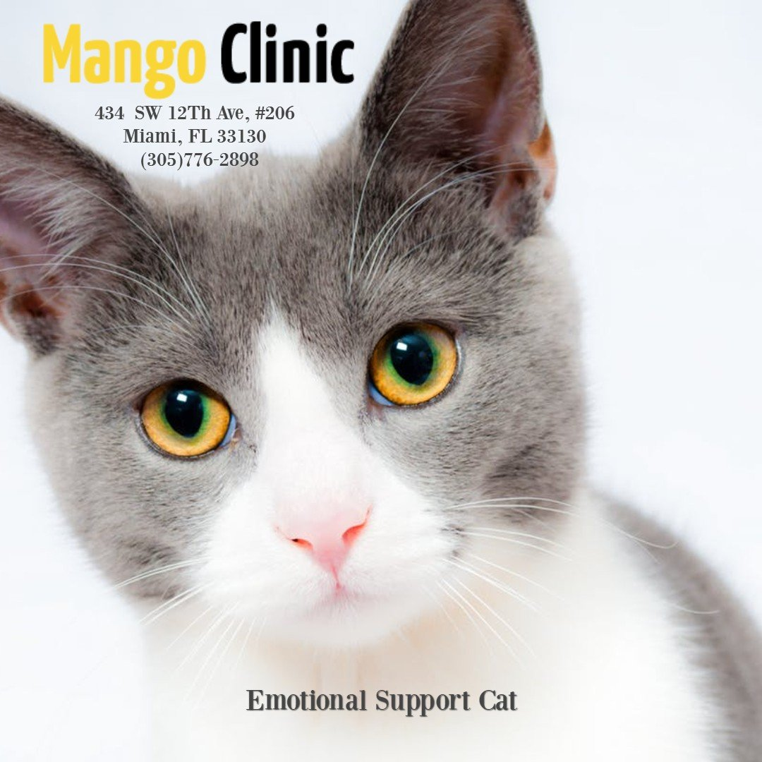 ESA-CAT-MangoClinic.jpg