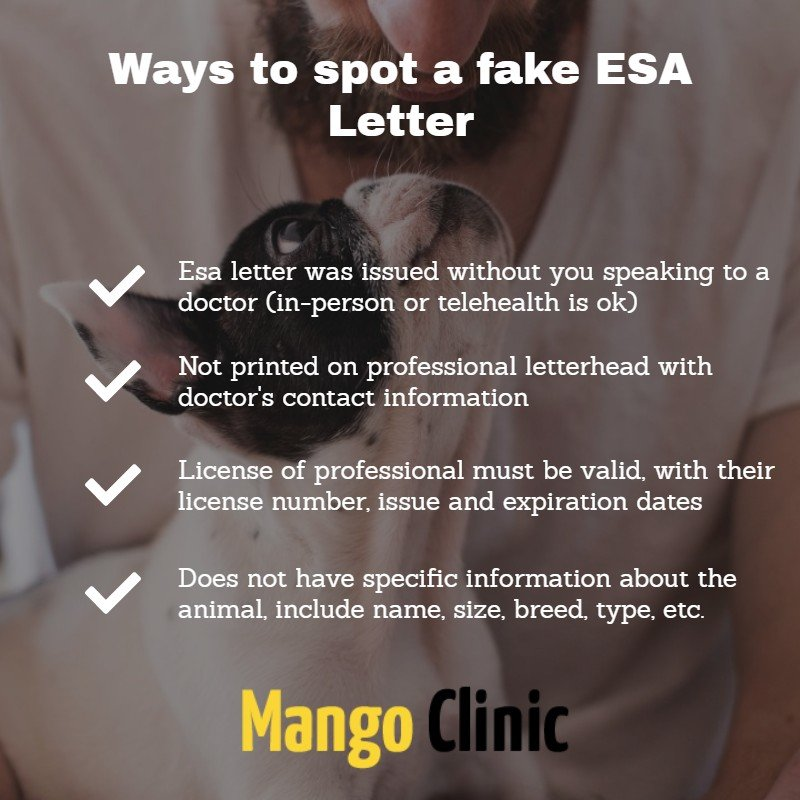 Ways to spot a fake ESA Letter - Mango Clinic