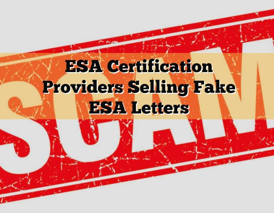 ESA-Certification-Providers-Selling-Fake-ESA-Letters.jpg
