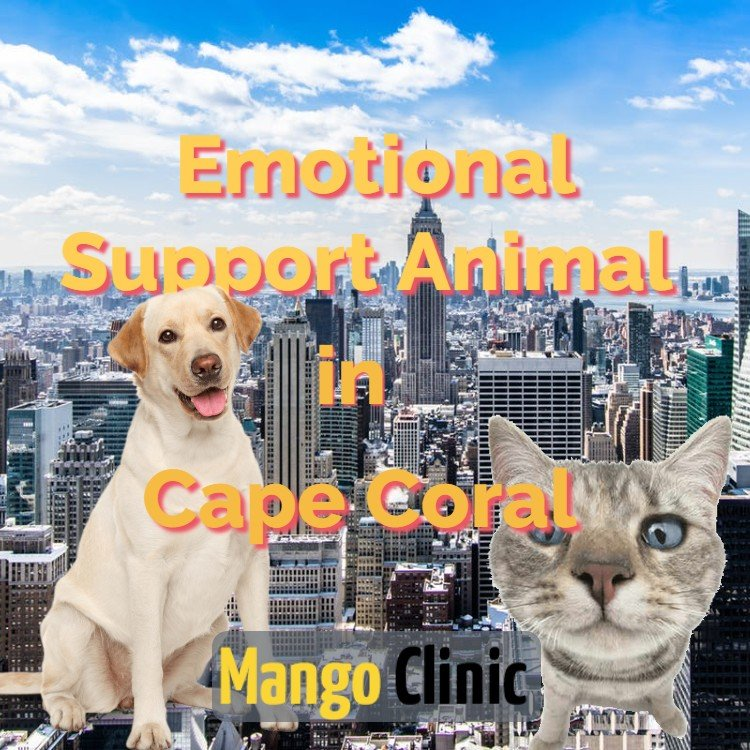 Cape-Coral-Emotional-Support-Animal-Letter.jpg