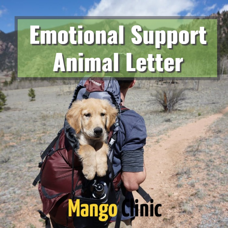 Certified-Emotional-Support-Animal-Letter.jpg