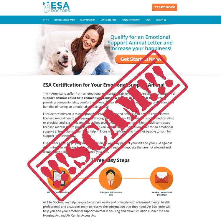 Fake-ESA-Letter-From-ESADoctors.com-copy.jpg