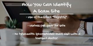 Identifying Scam Sites