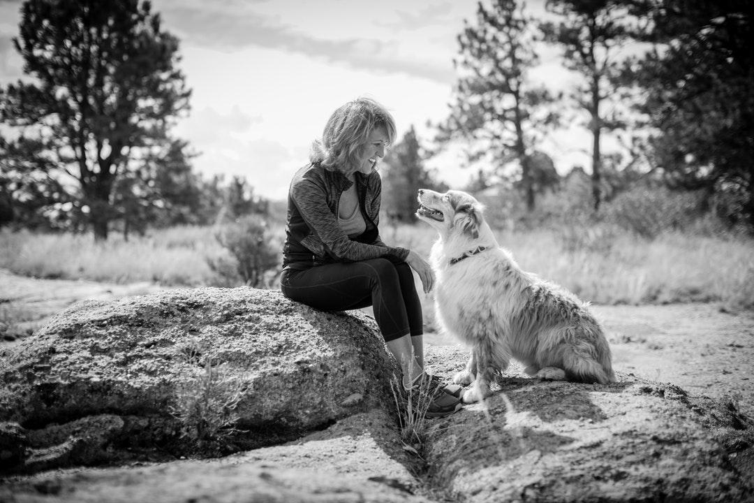 emotional support animal letter in Centerton