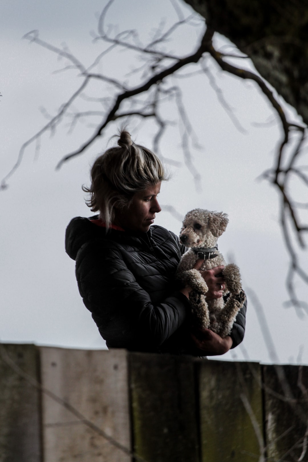 emotional support animal letter in Brecksville