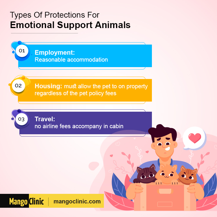 Emotional Support Animal rights