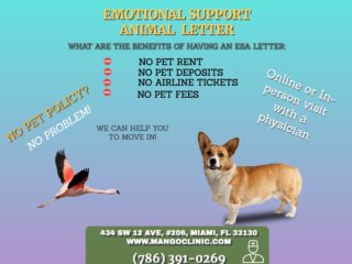 Emotional Support Animal from Certapet