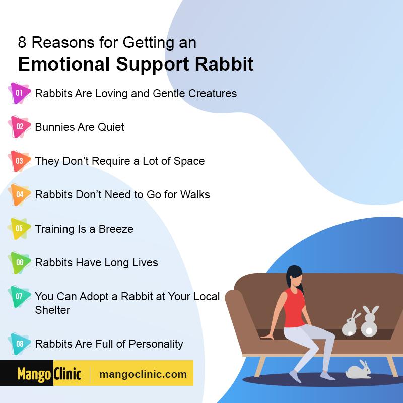 ESA Rabbit