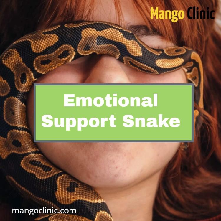 Emotional Support Animal Snake