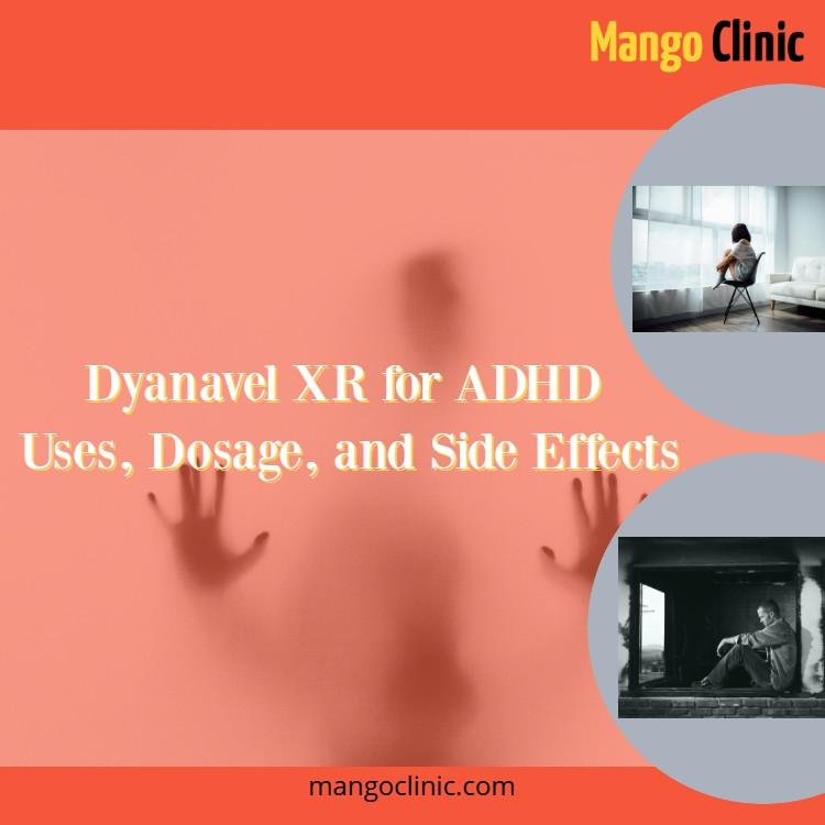 Dyanavel-XR.jpg