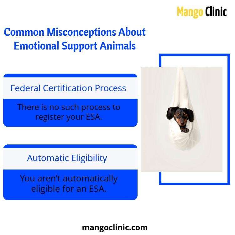 Emotional support animal misconceptions
