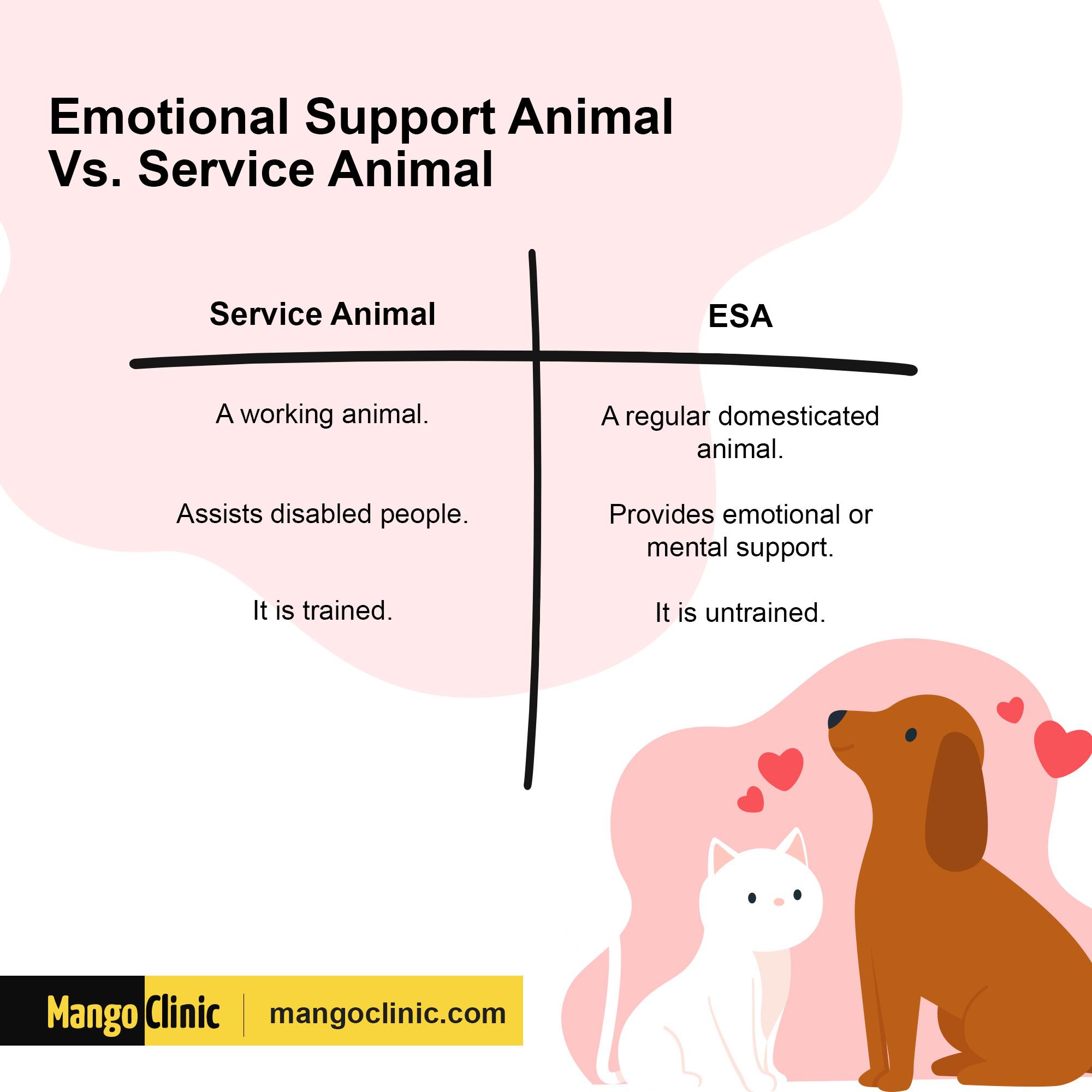 ESA Vs. Service Animal